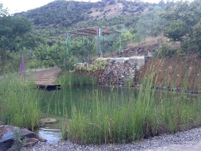13_masardevol_piscina.JPG