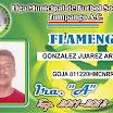13 FLA.jpg