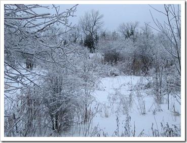 20120127_snow-ice_009