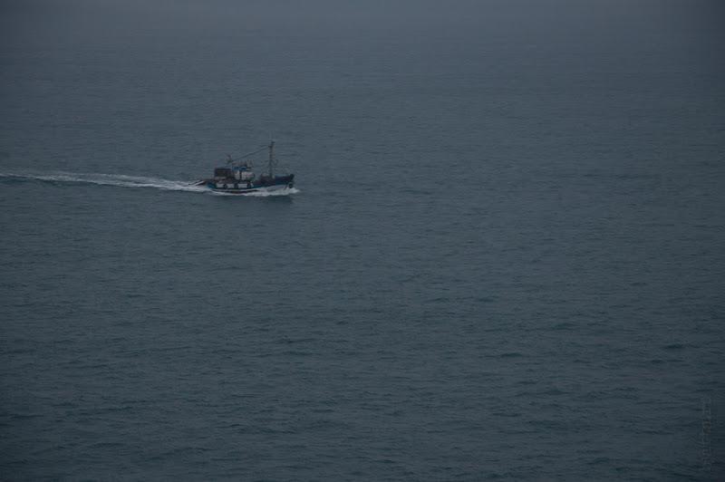Третий день. Casablanca. Morocco. Круиз. Costa Concordia. Этот скороход был принят мною за самоубийцу, но скорость нашего корабля сложно было сопоставить с его размерами.