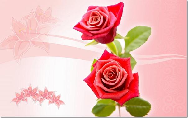 dia madre flores gif (4)