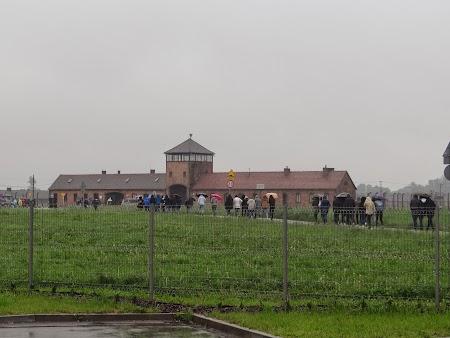24. Spre Birkenau.JPG