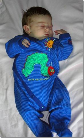2006-12-28 Sleepy Bug 2