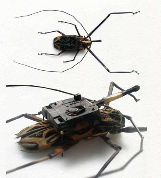 Exército de insetos 03