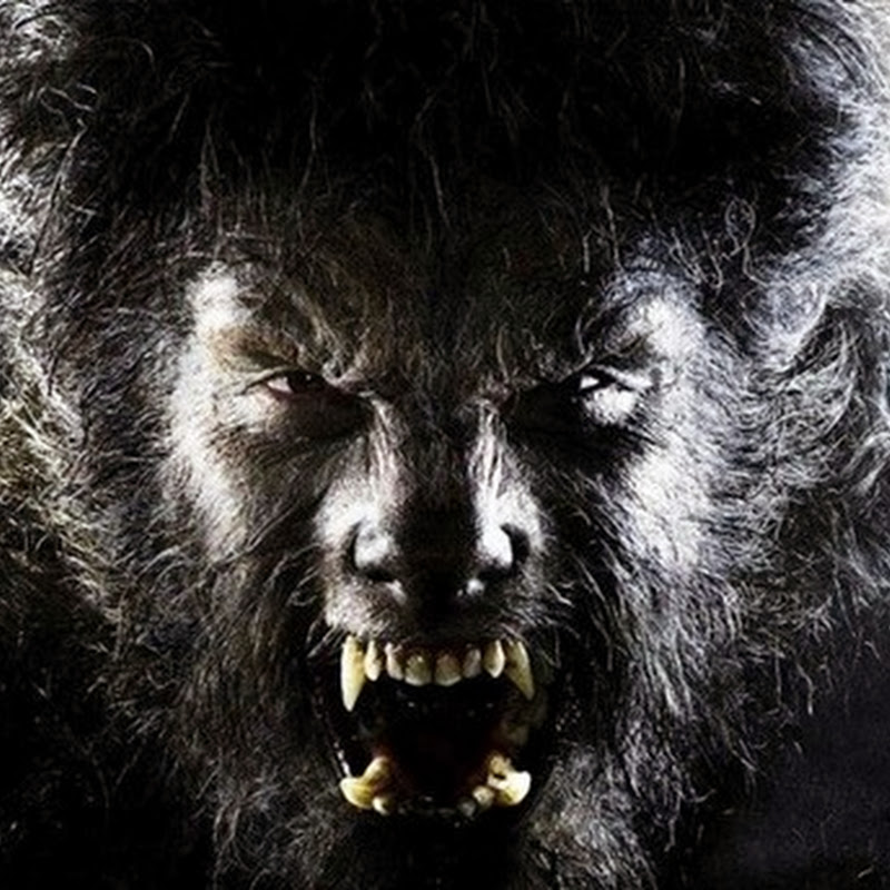TOP 10 ALLEGED REAL-LIFE WEREWOLVES AND WOLF-MEN