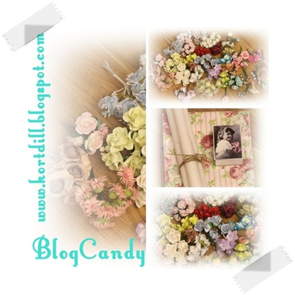 Blogcandy Kortdilla