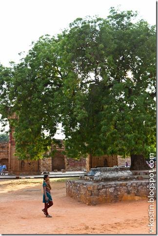 20110630_152446_delhi__MG_8340