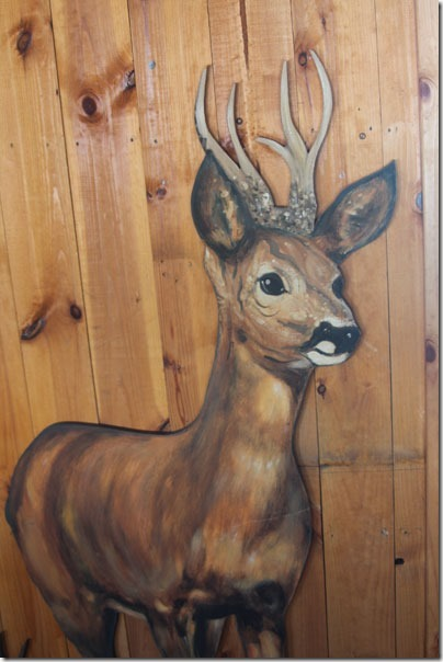 39-red-deer-hide