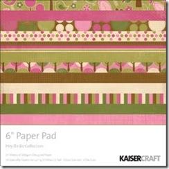 Q4 6 X 6 Paper pads.indd