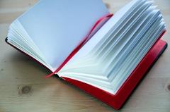 Дневник изобретателя