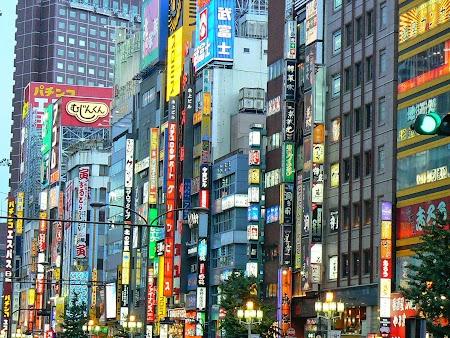 10. Luminile din Tokyo.JPG