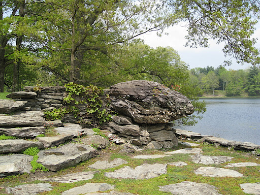 This stone terrace jutting out into the lake is in full sun, and the stones are interplanted with thyme. The fragrance is released simply by the warmth of the sun, but even more so when it is trod upon.