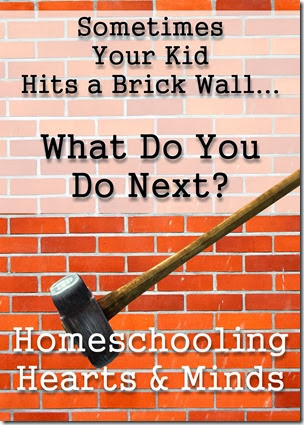 Sometimes Your Kid Hits a Brick Wall---how will you help them to scale it?  Homeschooling Hearts & Minds