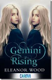 Gemini-Rising-300x465