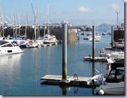 Sept 2013 Guernsey  (4)