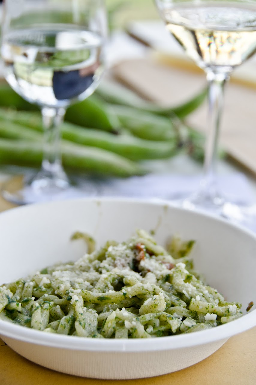 Pasta with stinging nettle pesto Terre Margaritelli