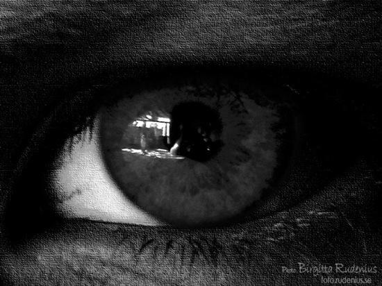 bw_20111019_eye