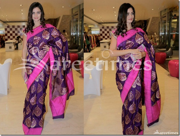 Purple_Designer_Silk_Saree