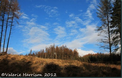 27-blue-sky