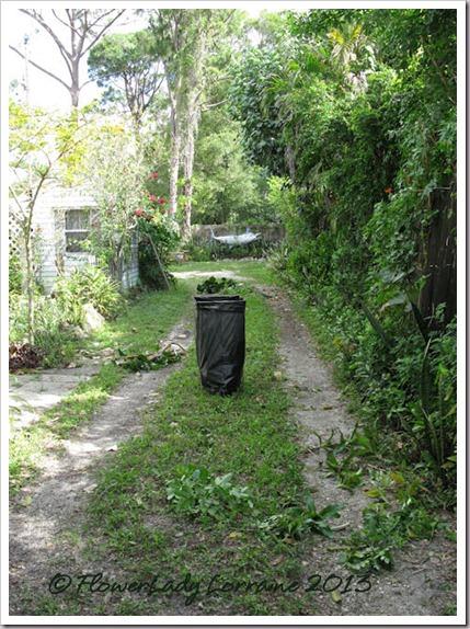 04-17-driveway