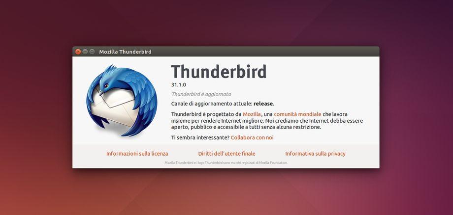 Thunderbird 31.1