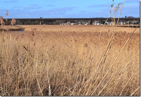 reeds to m5 at topsham