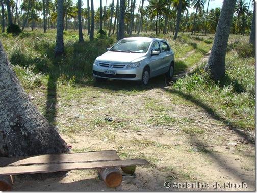 Praia do Patacho Entrada para o Carro Alagoas Brasil