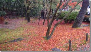 螢幕快照 2012-12-10 下午10.48.16
