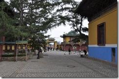 07-20 Gandan 037 800X monastere jaune