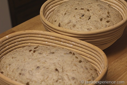 sunflower-seed-bread_1378