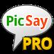 PicSay Pro - Photo Editor image