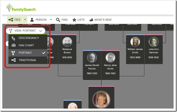 This image shows a portrait pedigree with the dropdown allowing switch to descendancy, fan chart, or traditional pedigree view