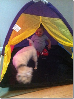 2012.07.27 Tent Fun (2)