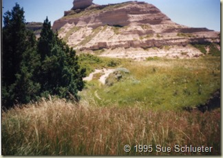 wagon tracks at Scotts Bluff