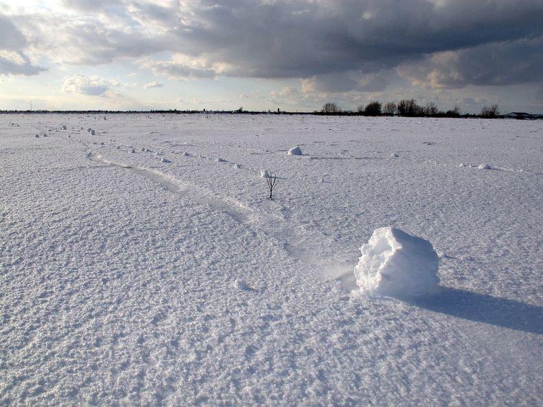 شعر و خاطرة رائعة عن الثلج snow-roller-1%5B2%5D