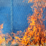 News_110703_BrushFire_SouthSac