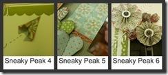 sneaky peak 1a