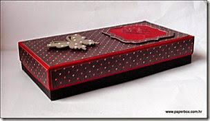 Geschenkverpackung-Box (3) aa