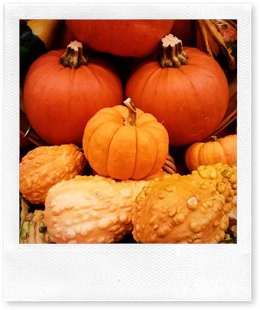 MaggieLamarre-pumpkin