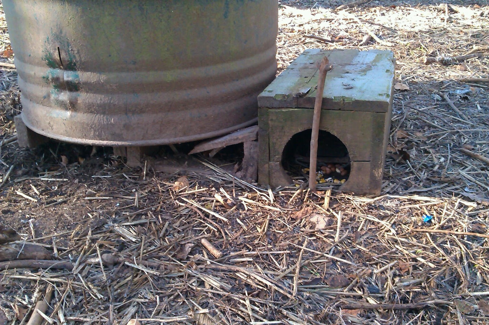 Gamekeeper\'s Diary: Vermin control at pheasant feeders