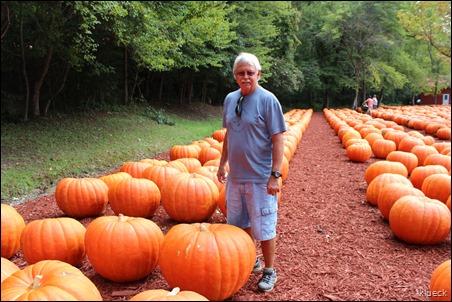 Burts Farm, pumpkin patch, Dawsonville, GA