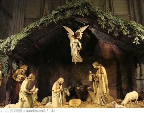 'Nativity Scene St Patrick's Cathedral' photo (c) 2009, amanderson2 - license: http://creativecommons.org/licenses/by/2.0/