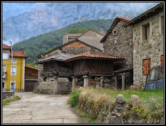 Picos 798