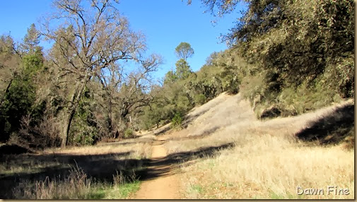 Magnolia ranch hike_012