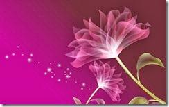 flores-flowers-flor-fleurs-488