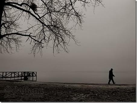 fog - photographis blog