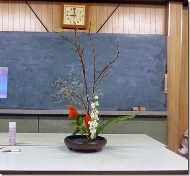 【自由花】ネコヤナギ、ケイトウ、ストック