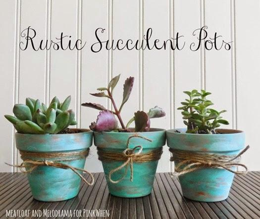Rustic-Succulent-Pots