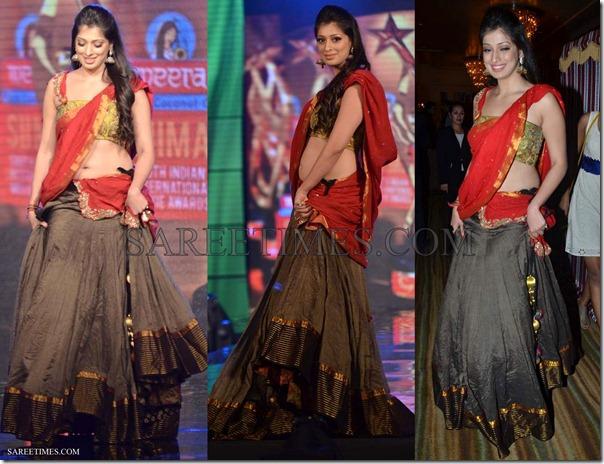 Lakshmi_Rai_Designer_Sari