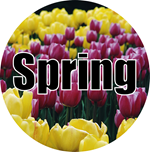 Spring Crafts and Kids Activities